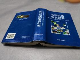 新闻技法鉴赏辞典