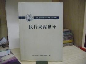 执行规范指导【16开,430页