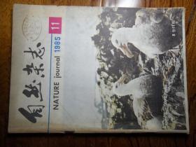 自然杂志【1985年第11期】