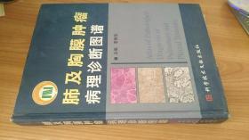 肺及胸膜肿瘤病理诊断图谱  李维华 科学技术文献出版社 精装 2003