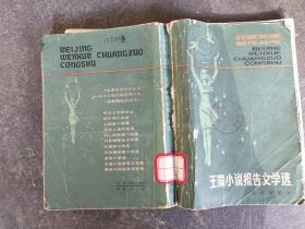 王蒙小说报告文学选