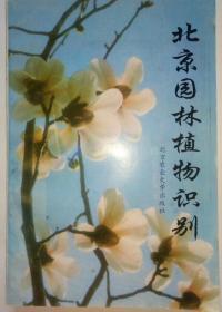 北京园林植物识别