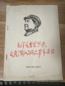 毛泽东思想照亮无产阶级文化革命道路