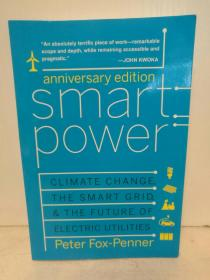 智能电力:气候变化、智能电网与电力的未来 Smart Power : Climate Change, the Smart Grid, and the Future of Electric Utilities by Peter Fox-Penner (能源)英文原版书