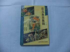 花鸟鱼虫集锦 第二版