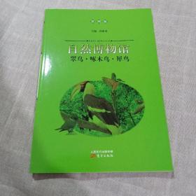 翠鸟·啄木鸟·犀鸟