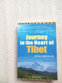 深入西藏之旅 : 英文