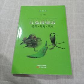 孔雀·鸳鸯·鹭鸟