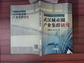 武汉城市圈产业集群研究··