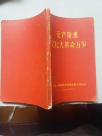 无产阶级文化大革命万岁(毛林像完好)