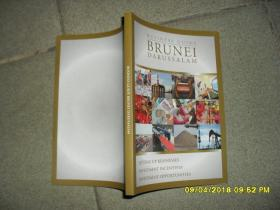 business guide  brunei darussalam文莱达鲁萨兰商业指南(85品大32开铜版纸彩印2008年日文原版152页参看书影)43406