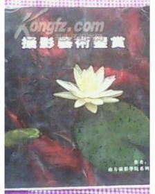 摄影艺术鉴赏(周宁摄影图片24幅)