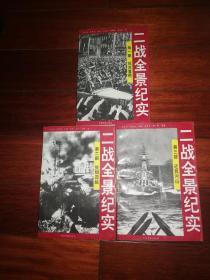 二战全景纪实(三册全)