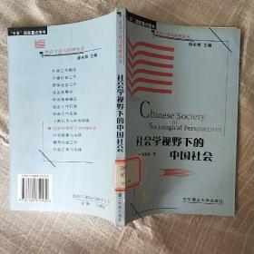 社会学视野下的中国社会