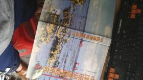 中国珊瑚礁地貌研究