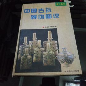 中国古玩辨伪图说