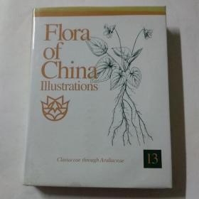 中国植物志图集 第13卷(英文版)