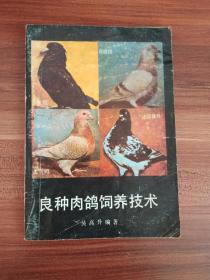 良种肉鸽饲养技术