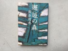 邂逅の森(日文原版,文库版,软精装有护封)