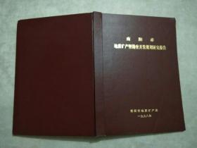 南阳市地质矿产及勘查开发规划研究报告