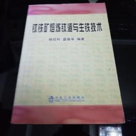 职业技术学院教学用书:钛铁矿熔炼钛渣与生铁技术
