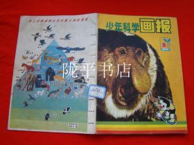 少年科学画报1981-8