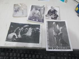 自鉴,7八十年代 各种老照片一组(10张