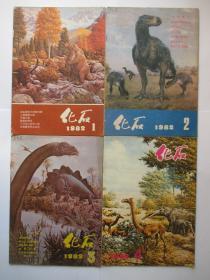 化石 1982