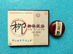 柳体技法 光盘1张 【中国书法技法讲座。张书范主讲】