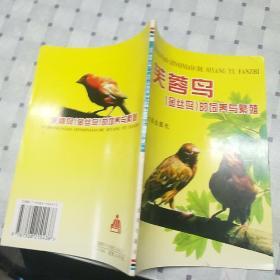 芙蓉鸟(金丝鸟)的饲养与繁殖