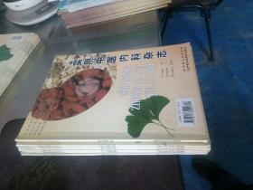 实用中医内科杂志2006年 1-6期  (双月刊)