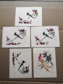 黄慕尧精品小张卡纸花鸟画5张合售