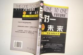 一对一未来:一次一个顾客地建造关系