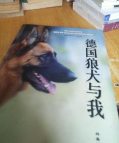 德国狼犬与我