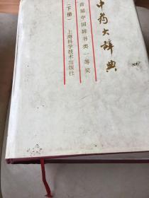 中药大辞典(缩印本)(下)