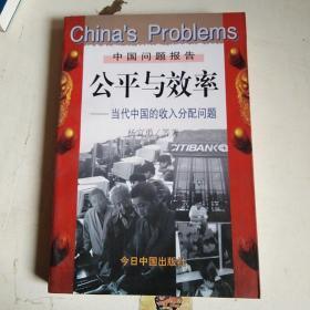 公平与效率-当代中国的收入分配问题