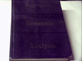 Aggregate  Economic  Analysis(精装)
