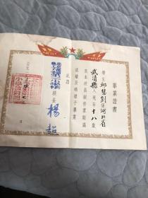 1954年毕业证