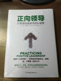 正向领导:好管理就是激活团队正能量(美国十大商学院领导力课程)