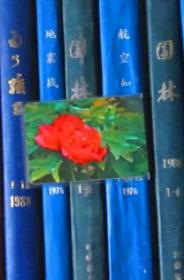 年历片-1975年:红牡丹【一张】