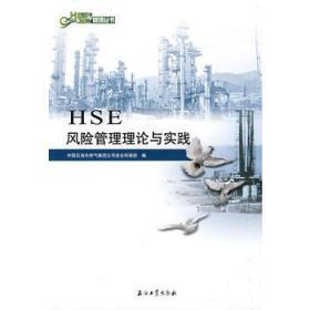 中国石油HSE管理丛书HSE风险管理理论与实践`