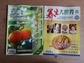 养生大世界2005年11月A、B版(两册合售)【实物拍图  品相自鉴】