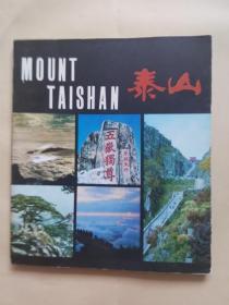 泰山(中国名山画册)