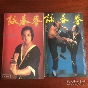 咏春拳上下册《国内简体版》