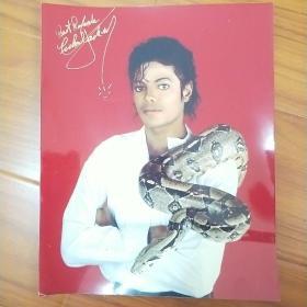 杰克逊彩色大照片。