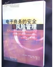 电子商务的安全与风险管理——中欧-华夏电子商务译丛