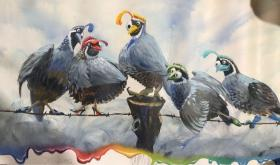 加拿大画家 will enns 油画作品eagles