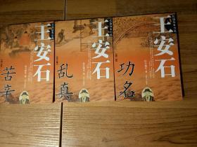 长篇历史小说——王安石:功名(全三册)