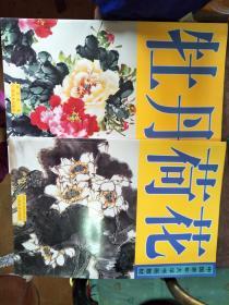中国老年大学书画教材:牡丹、荷花,两本合售
