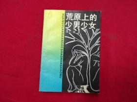 荒原上的少男少女 作者 : 沈仁康-签赠送-广东作家